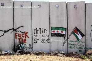Palestin fuck the wall solidarity with Syria